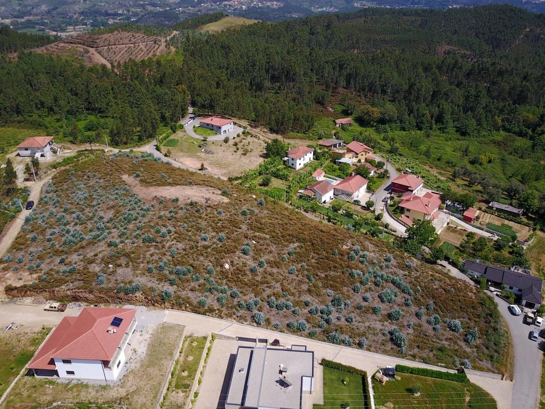 Over de locatie van het woonproject in de groenste streek van Portugal
